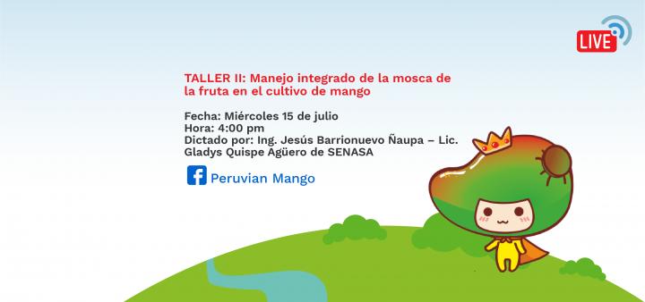 TALLER II: Manejo integrado de la mosca de la fruta en el cultivo de mango