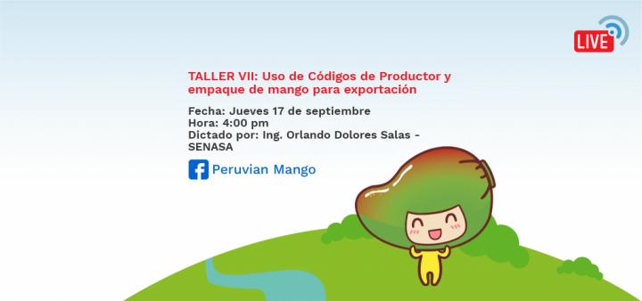 TALLER VII: Uso de Códigos de Productor y empaque de mango para exportación