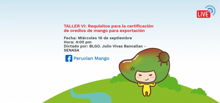 TALLER VI: Requisitos para la certificación de oredios de mango para exportación